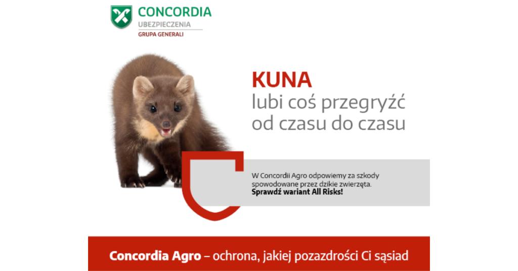 conco2
